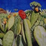Kaktus Opuntie