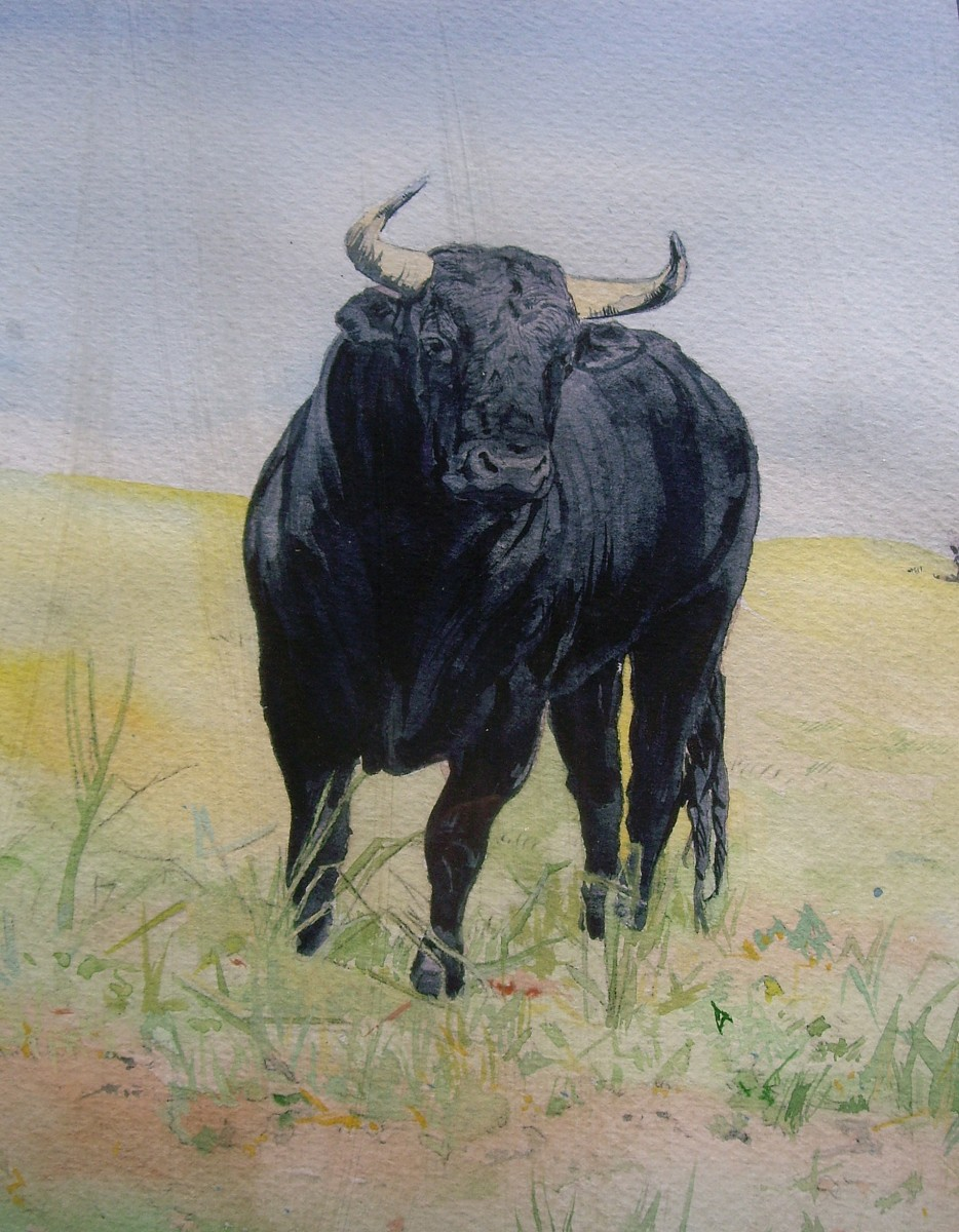 Toro Bravo