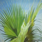 Washingtonia Palme